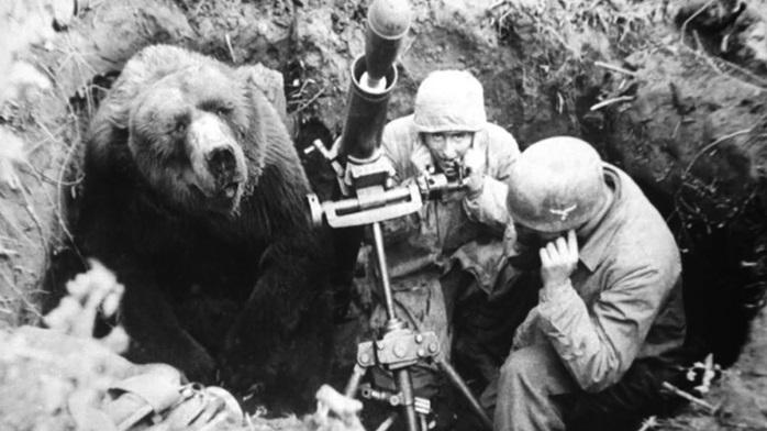 Corporal Wojtek the bear that joined the Polish Army : BattlefieldV